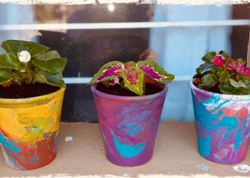 Hydro-dip terracotta potplanthouers